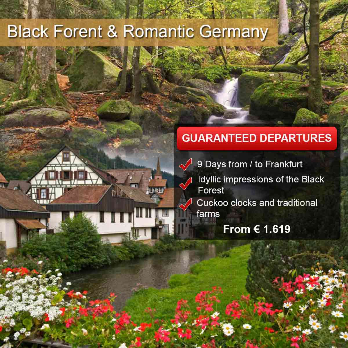 Black Forest & Romantic Germany