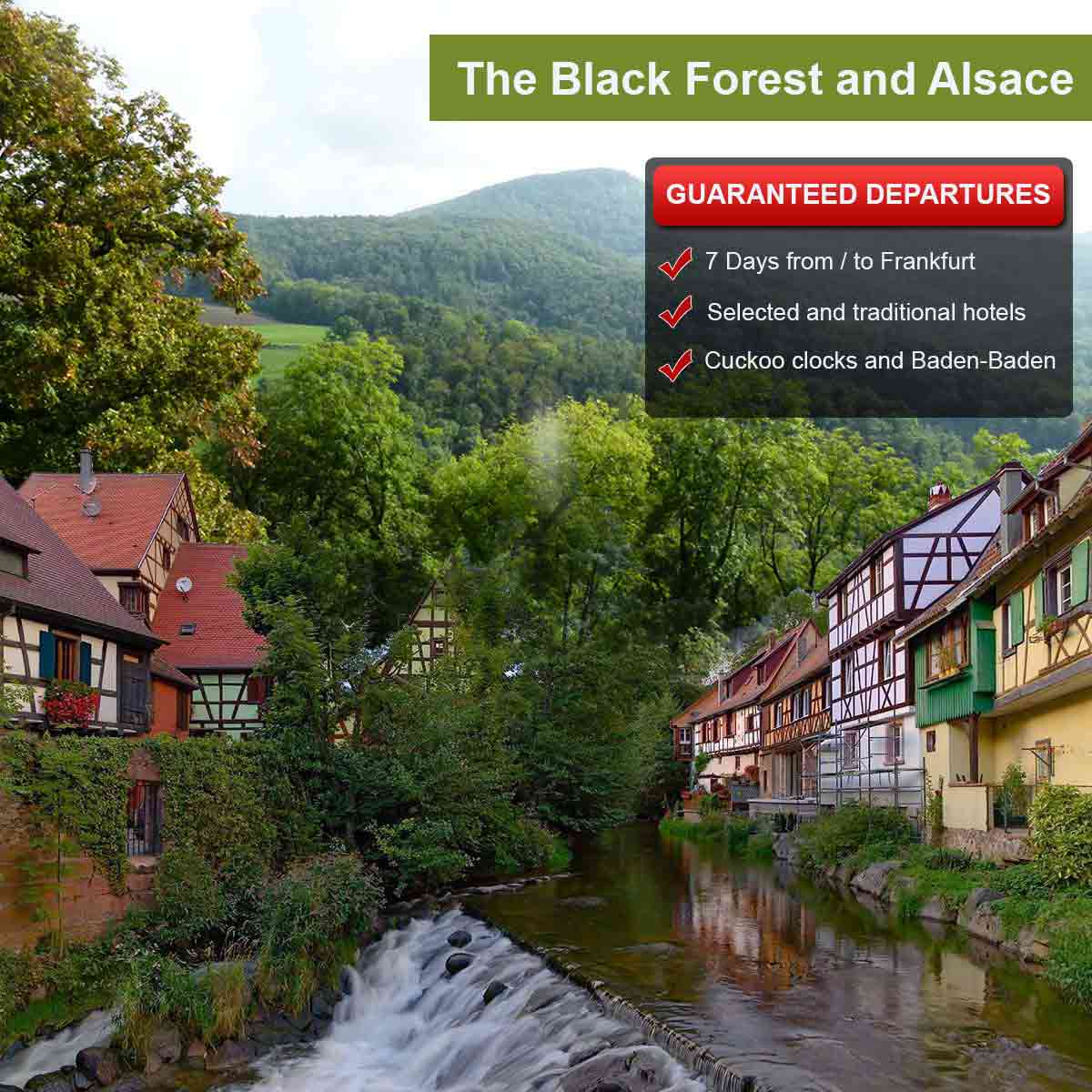 The Black Forest and Alsace